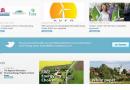 Podkarpacki Klaster Energii Odnawialnej (PKEO) przystąpił do Forum Rozwoju Efektywnej Energii (FREE)