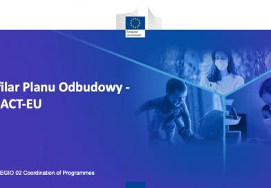 II filar Planu Odbudowy – REACT EU – tematem kolejnego spotkania z cyklu Kawa z Ekspertem